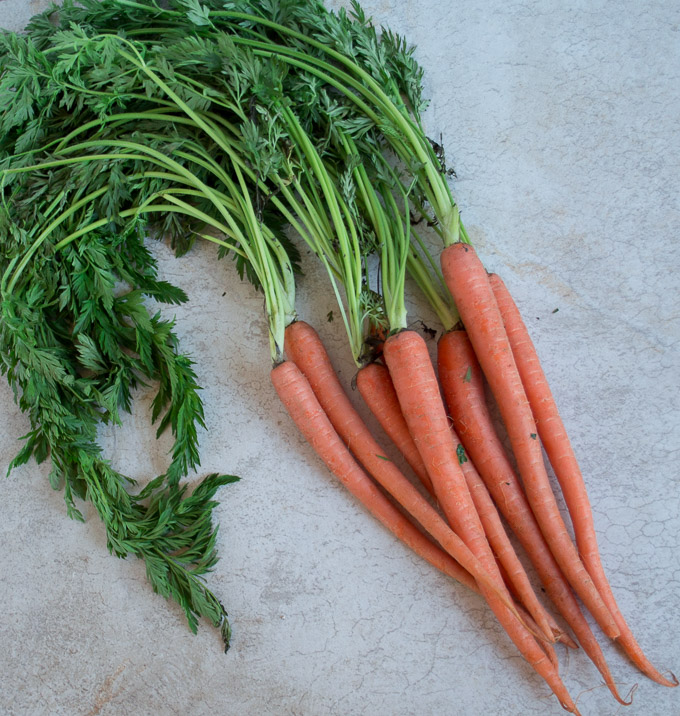 bunch of carrots with green steams