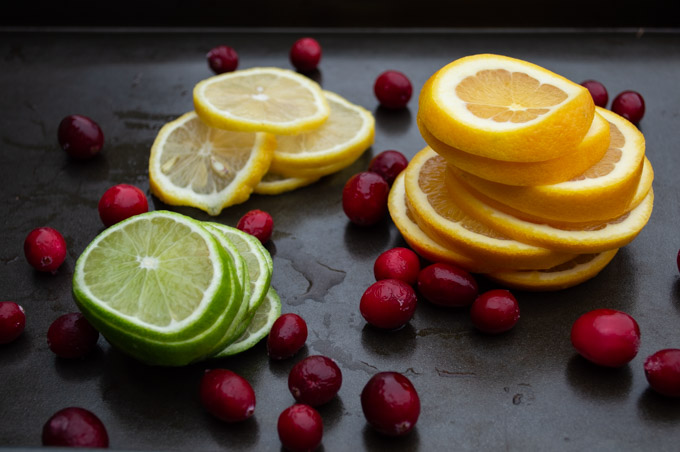 sliced citrus and cranberries