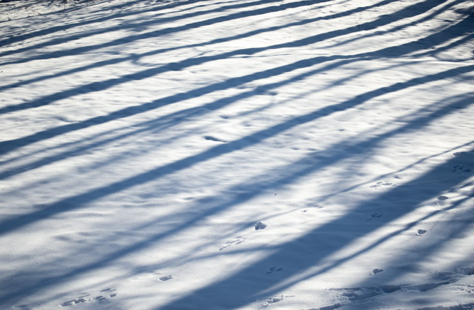 sun casting shadows on fresh fallen snow